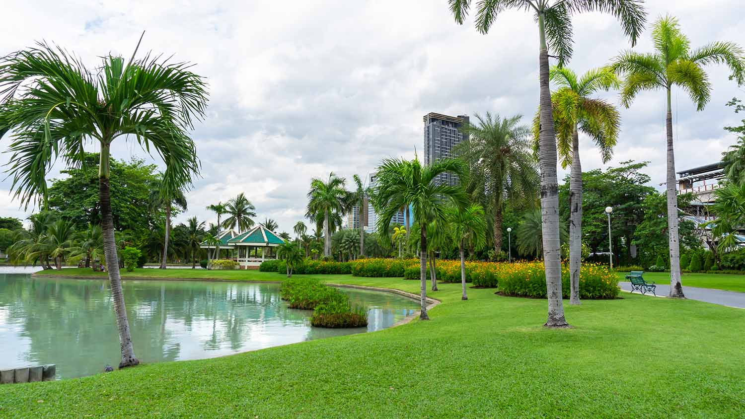 Green grass lawn beside a lake, palm and greenery trees on background under cloudy sky in garden of public park